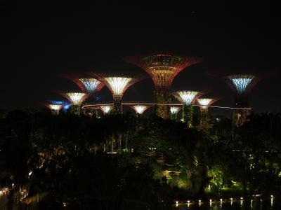 スリランカ・シンガポールのんびり旅行 (シンガポール 2、3日目/B級グルメ、たまに観光)