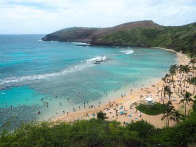 15年ぶり!?HAWAIIはやっぱり楽園でした~ハナウマ湾で魚と遊ぶ③