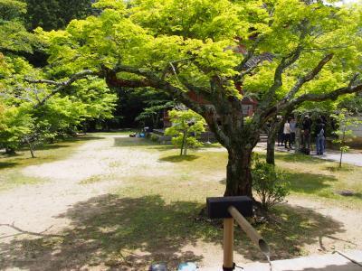 西神戸へ2、太山寺(たいさんじ)