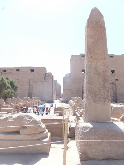 ナイル川クルーズとエジプト満喫8日間 その1 出国~ルクソール