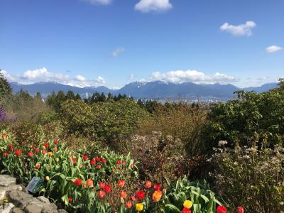 2018カナダ 花盛りのバンクーバー ちょっと長めのトランジット