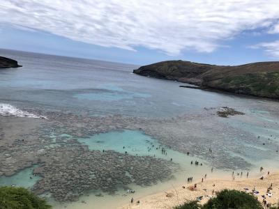 癒された~。ハワイ5