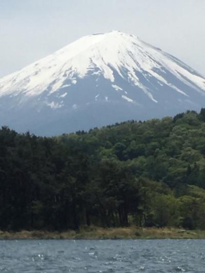 ザ、アメリカ人は、やはり、富士山がお好き。YOUはどこ行く日本で?