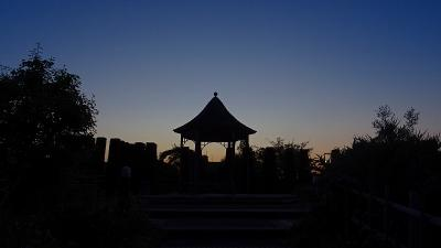 早朝散歩 山本新池公園へ 上巻。
