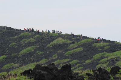 気軽に行ける離島・自然豊かな魅力ある「伊豆大島」