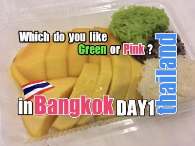 おじさんぽ・おばさんぽ ~タイ・バンコク1泊2日で一体何ができるんだ?実践してみよう!~ 前編 ピンクと緑のカオマンガイはどっちが美味い?