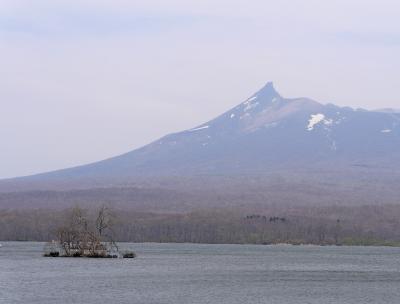 函館に桜を見に行く5-シベリア火災で晴れていてもかすんでいる大沼公園,島巡りの路を歩く