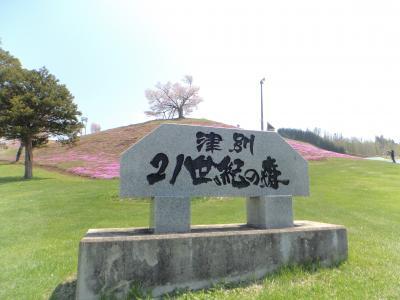 故郷の桜を見に初めて出かけて来ました♪