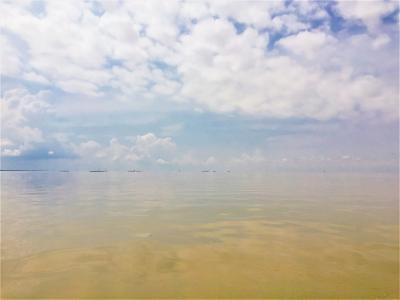 GWカンボジア一人旅:トンレサップ湖と湖に浮かぶ村