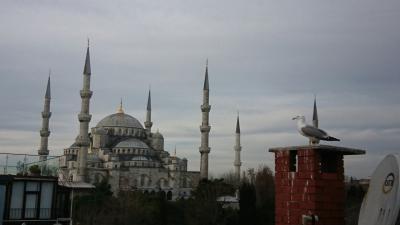 年末年始のトルコ 5歳&7歳子連れ旅(ホームステイも!) イスタンブール篇(2)
