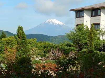 今年も箱根観光の旅を行う③ホテルグリーンプラザ箱根について