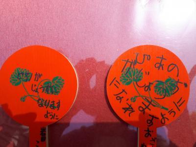京都でおうち暮らしとハイキング旅3日目~午前は下鴨、午後は鞍馬~