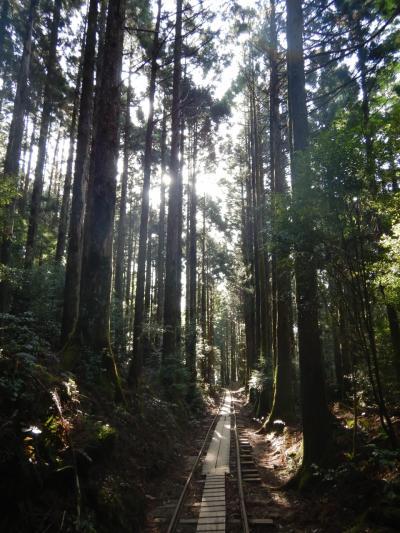 2018春 屋久島でひたすら歩く!①縄文杉へGo!!
