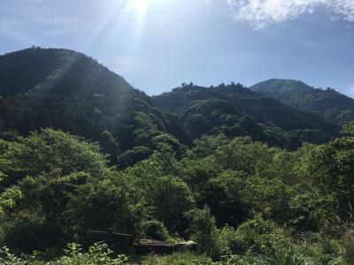 パン屋さん探訪と幕山ハイキング