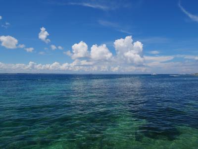 フィリピン セブ島の光と闇 3泊4日 後編