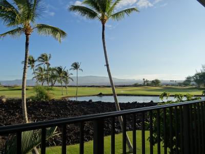 4泊6日 ハワイ島 ヒルトン キングスランド体験宿泊の旅