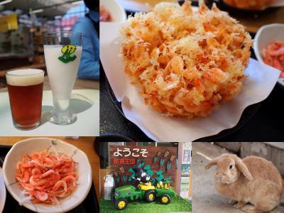 春の伊豆旅No.1 由比「ごはん屋さくら」で桜えびを食べよう 「酪農王国オラッチェ」でかわいいうさぎとのふれあいと風の谷のビール