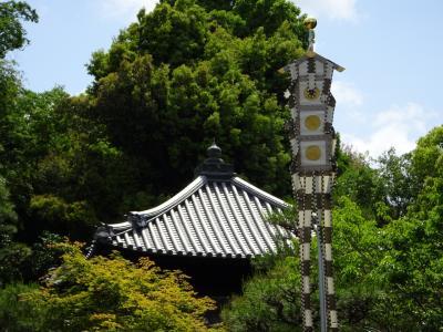 京都の妙法院の五月会で、本堂(普賢堂)が特別公開