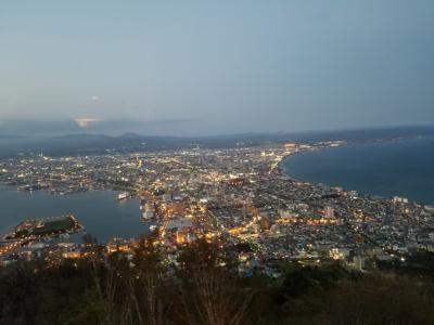 函館山の夜景は想像通りキレイ