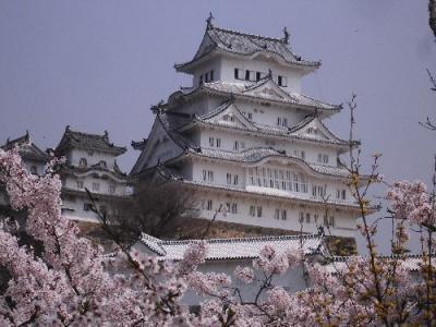 「青春18切符」...「姫路城・明石城跡のお花見と神戸・大阪・京都の旅」