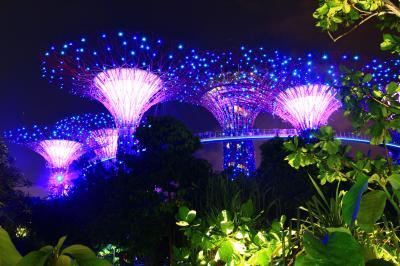 はじめてのシンガポール・タイ with 母娘旅行④「ガーデンバイザベイのイルミネーションガーデンラプソディ」と「噴水ショー・スペクトラ」