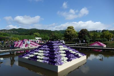 あしかがフラワーパークと鑁阿寺・足利織姫神社