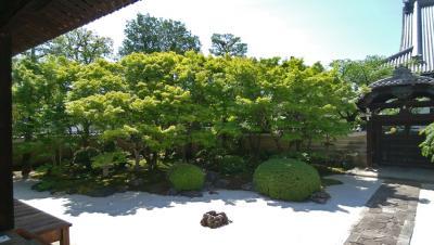 妙顕寺・四海唱導の庭へ