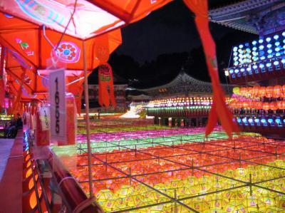 週末釜山★三光寺の燃灯祭 Lantern Festival