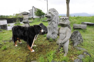 バーニーと行く、わけありな九州・山陰 2