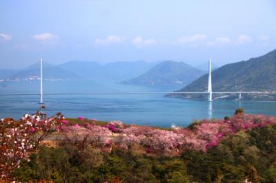 '18 桜を求めて(しまなみ海道・伯方開山・来島海峡編)