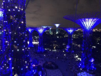 今年2度目のわくわくシンガポール旅行♪ 1日目