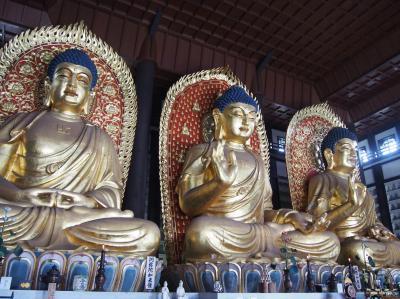 兵庫県但馬の仏像その2、長楽寺の世界最大級の木像三大佛