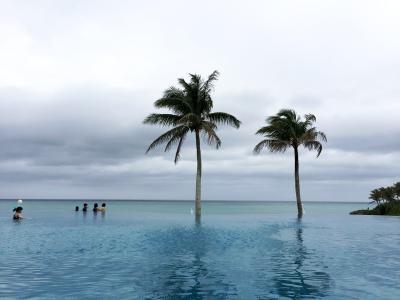 やっぱり沖縄
