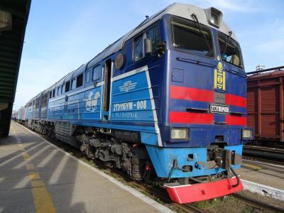 シベリア鉄道  新緑の平原(モンゴル編)