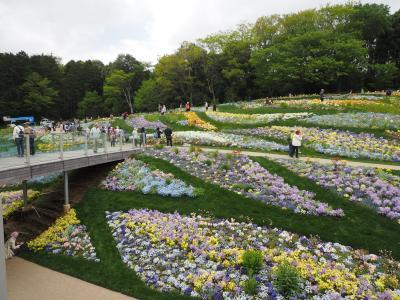 里山ガーデンフェスタの美しすぎる大花壇