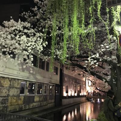 京都ひとり旅3 朝散歩で面白いもの探し 午前は精進料理教室 午後は嵯峨をサイクリング