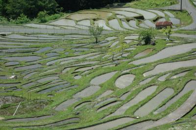 GWも混雑回避☆紀伊半島斜め縦断で岩と水を見る旅3泊4日〈第3日目・熊野市でpart2〉