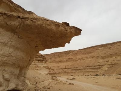 すぐそこ!にある砂漠 その1 ワディ・ディグラ