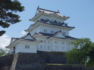 新装なった小田原城に登城する。ここからの眺めは絶景です。