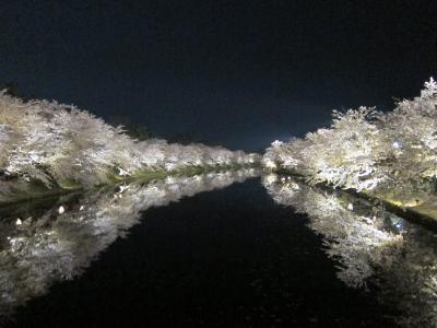 2018年GW東北旅行①秋田角館から青森弘前城の桜