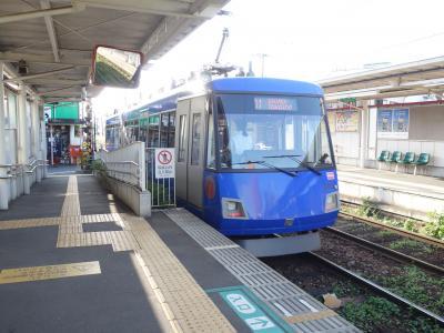 中央林間から東急田園都市線に乗りました。世田谷線にも乗りました。