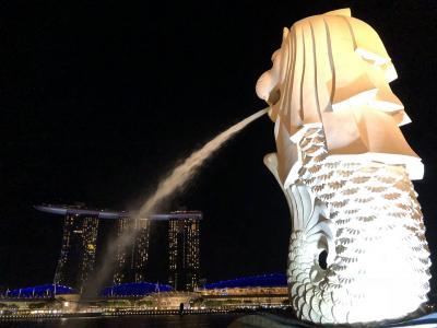 プラチナチャレンジ⑤シンガポール観光