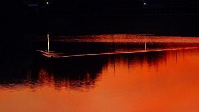早朝散歩 宝塚市安倉上の池 上巻。