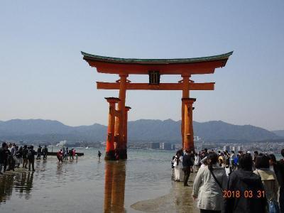 宮島で「牡蠣」と「穴子」広島で「お好み焼き」山口で「岩国寿司」の食い倒れ旅行