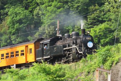 2018春、静岡での定例懇親会(1/9):5月16日:名古屋からJRで金谷へ、大井川鉄道で川根へ、SL見学と撮影