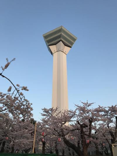 2018年5月GW函館五稜郭桜を見にプチ旅行