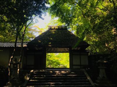 京都東山の穴場「法然院」から哲学の道、戸隠そばへ