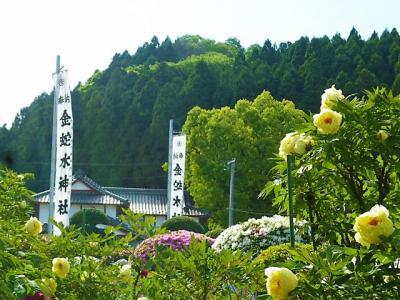 花まつりの金蛇水神社&新緑の竹駒神社