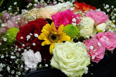 【薔薇の祭典】 国際バラとガーデニングショウ2018