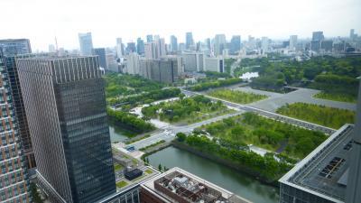 ANAの旅作利用で行く、東京2泊3日の旅【丸ビル(35階展望フロア)&KITTE(KITTEガーデン)散策編】